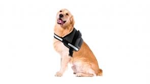 peitoral cão porte pequeno médio grande ergonómico